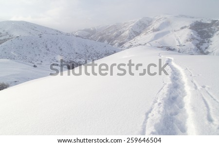Trail in the snow in the mountains - stock photo