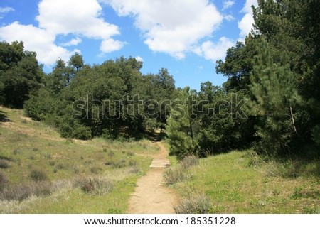 Trail leading through pines in the mountains, California - stock photo