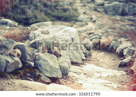 trail made of rocks on the top of the mountain in the woods of n - stock photo