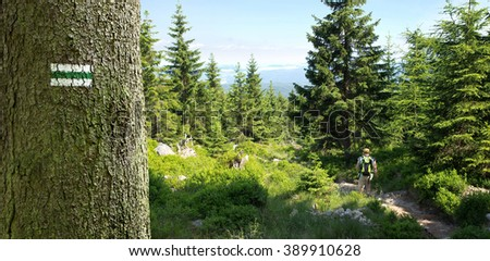 trail sign on a tree and woman walking the mountain path - stock photo