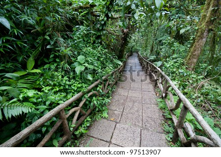 Trail through a lowland tropical rainforest in Costa Rica at La Paz Waterfall Gardens
