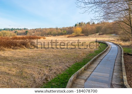 Trail through lush green forest in Deer Lake Park, Vancouver, Canada. - stock photo