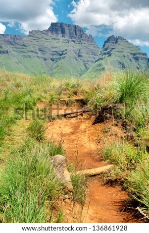 Trail to Cathkin Peak. Shot in Monk's Cowl nature reserve, Drakensberg Mountains, South Africa. - stock photo