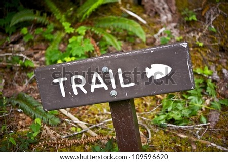 Trail Wood Sign in the Forest. Navigation for Hikers. Recreation Photo Collection. Olympic National Park, WA, USA. - stock photo