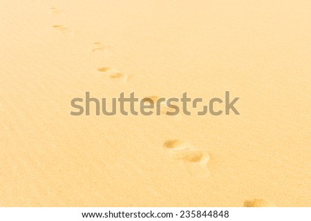 Trails on the dune in the Sahara desert in Egypt - stock photo