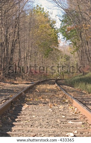 Train tracks in the fall