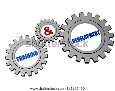 training and development - words in 3d silver grey gearwheels, education growth concept - stock photo