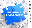 Training and Development Written on Blue Puzzle Pieces. Educational Concept.  3D Render. - stock vector
