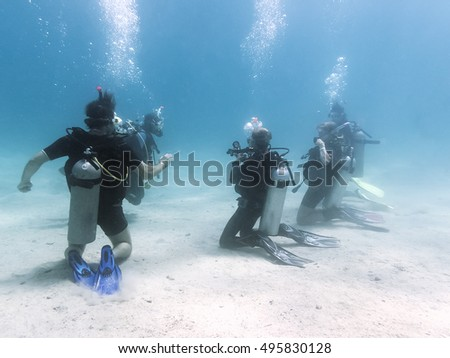Training group of divers. Red Sea. Egypt