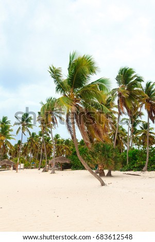 Tranquil day on the beach in Cabeza de Torro, Punta Cana