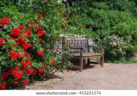 Tranquil garden bench surrounded by blossom bushes - stock photo
