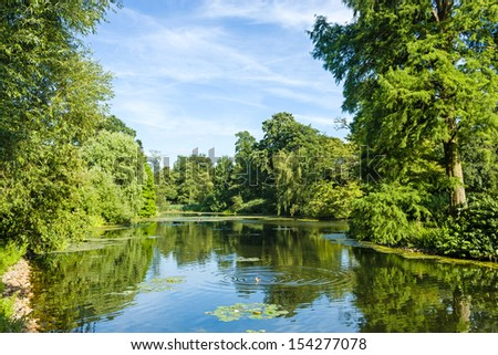 Tranquil Pond Framed by Lush Green Woodland Park in Sunshine - stock photo