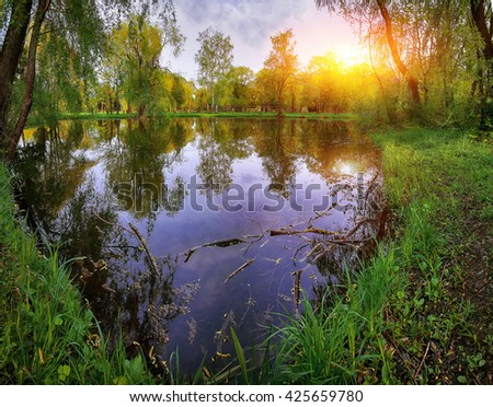 Tranquil Pond Framed by Lush Green Woodland Park in Sunshine. Reflection of trees in water - stock photo