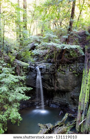 Tranquil Scene at Sempervirens Falls in Big Basin Redwoods State Park, California.