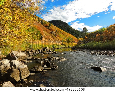 Tranquil scene next to the south platte river in fall in  waterton canyon, littleton, colorado