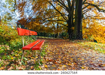 Tranquil scene: red chair with golden tree and leaves in autumn, in Zurich, Switzerland - stock photo