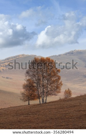 Tranquil scenery at a vast steppe in autumn colors, Mulan Weichang, inner Mongolia, China - stock photo