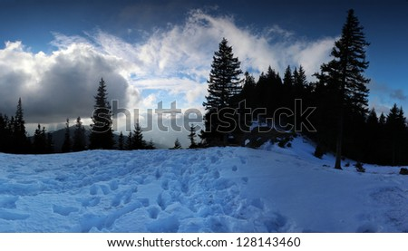 Tranquil snowy panoramic sunset landscape with tall pine trees - stock photo