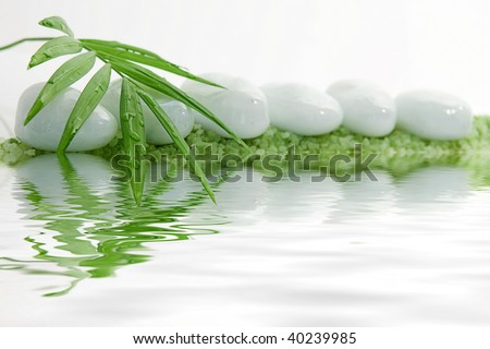 Tranquil Stone with Bamboo Leaf With Water Reflection