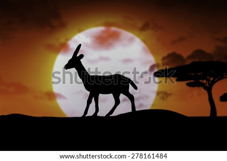 tranquil sunset scene in africa - stock photo