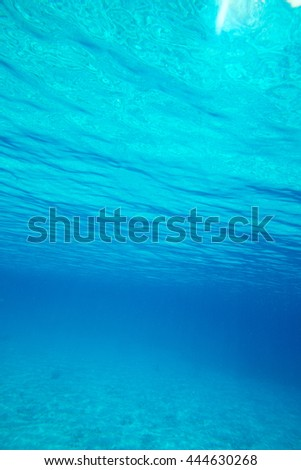 Tranquil underwater scene with copy space - stock photo