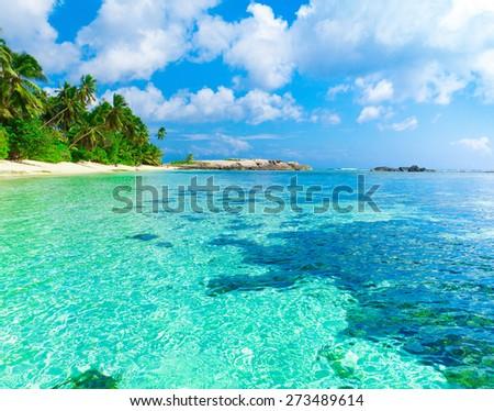 Tranquility Sea Shore  - stock photo