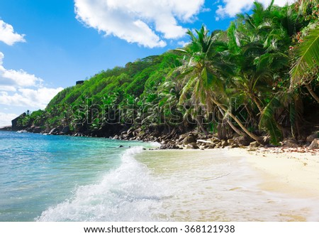 Tranquility Summertime Jungle  - stock photo
