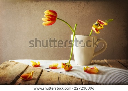 Transience: Still life with tulips in a cup