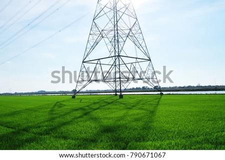 Transmission line with paddy field