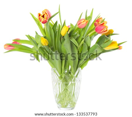 Transparent glass vase with fresh tulips isolated on white background