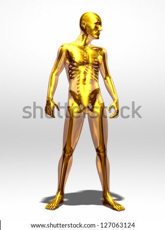 transparent male body with skeleton in gold - stock photo