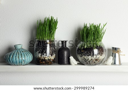 Transparent pots with fresh green grass on shelf - stock photo