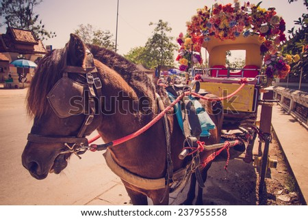 transportation by horse in thailand (vintage style and shallow) - stock photo