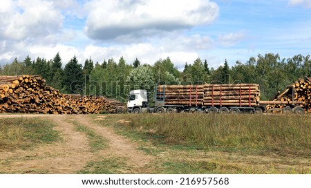 Transportation of logs on the big timber carrier - stock photo