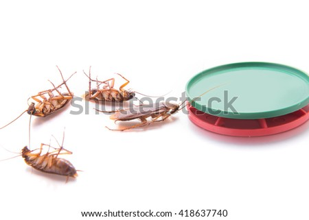 trap cockroach on white background - stock photo