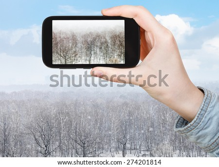 travel concept - tourist takes picture of oak and birch trees in snow blizzard in forest in spring on smartphone - stock photo