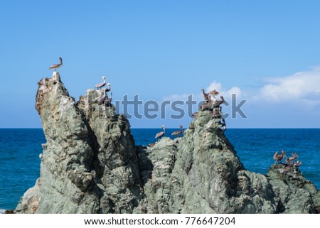 Travel photography - a group of pelicans and an isolated rock along the coast of Caracas (Los Caracas, Vargas, Venezuela).