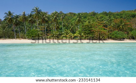 Travel vacation background - Tropical island with resorts - Phi-Phi island, Krabi Province, Thailand. - stock photo