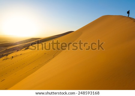 Traveler in the desert, active young woman trekking in hot sandy wilderness, dramatic sunset, summertime adventure, extreme tourism concept - stock photo