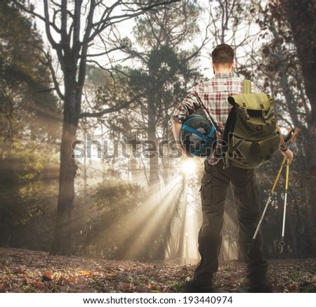 Traveler with backpack, hiking poles and sleeping bag  in autumnal forest  - stock photo