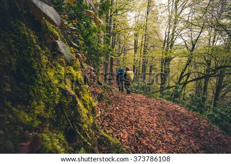 Travelers with backpack hiking outdoor Travel Lifestyle concept forest on background Summer journey vacations  - stock photo
