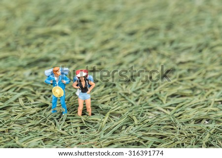 Travelers with Backpack on grass