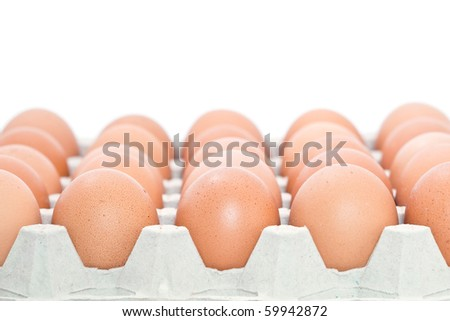 Tray of fresh chicken eggs isolated on white background.
