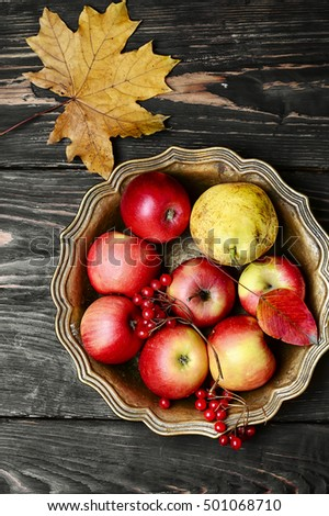 Tray with apples and viburnum and maple fallen leaf