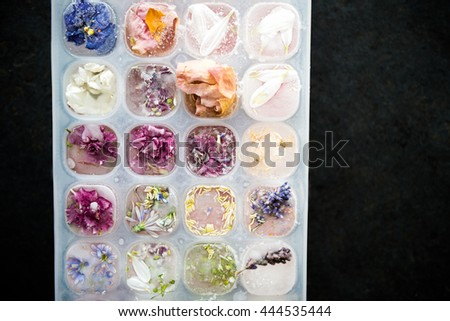 Tray with Frozen Flowers in Ice Cubes on Dark Grey Background, space for text