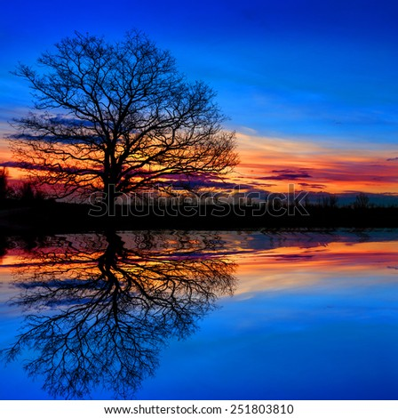 Tree against sunset sky with water reflection - stock photo