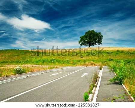 Tree and blue sky with road