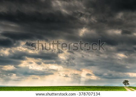 tree and path and dramatic sky  - stock photo
