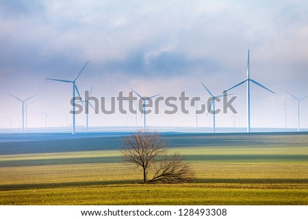 Tree and wind power - stock photo