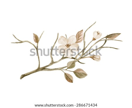 Tree branch with blooming flowers. Watercolor illustration in retro style - stock photo